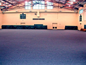 Carpet flooring for Gyms